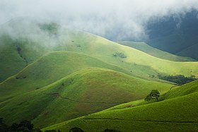 Image illustrative de l'article Parc national de Kudremukh