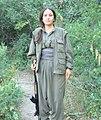 Kurdish PKK Guerilla (11484164426).jpg