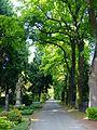 LSG Melatenfriedhof Weg J a.jpg