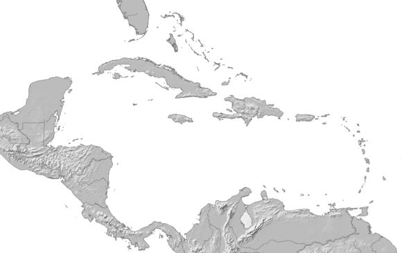 Miglior sito di incontri portoricano