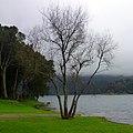 Lagoa das Sete Cidades, São Miguel, Açores - panoramio (2).jpg