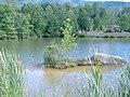 Lake Agape - panoramio (1).jpg