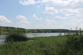 Kasimovsky District District in Ryazan Oblast, Russia