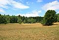 Landscape by Boleboř village.jpg