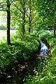 Landschaftsschutzgebiet Gütersloh - Isselhorst - Krullsbach (2).jpg