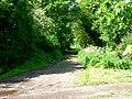 Lane from Welburn House - geograph.org.uk - 175787.jpg