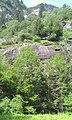 Lavorgo - panoramio (12).jpg