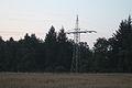 Letzter Mast vor Umspannwerk Schoenaich 04082013.JPG