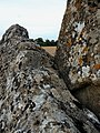 Lichen detail on Lugbury Long Barrow.jpg
