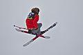 Lillehammer 2016 Slopestyle ski (24500094884).jpg