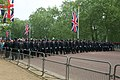 Line of police officers -London, England-29April2011.jpg