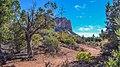 Llama Trail (39316139884).jpg