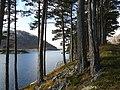Loch Monar - geograph.org.uk - 1029156.jpg