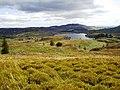 Loch Ordie - geograph.org.uk - 1448999.jpg
