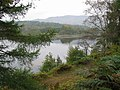 Loch Tummel east of Tummel Bridge. - geograph.org.uk - 273471.jpg