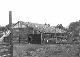 P Ranch - Long Barn at the P Ranch, 1979