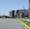Looking W along W Grant St at Roskie Hall and South Hedges Hall - Montana State University - 2013-07-09.jpg