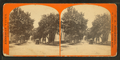 Looking up Lafayette Street, by C. A. Beckford.png
