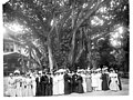 Los Angeles Chamber of Commerce luncheon for ladies at the residence of ex-Governor Cleghorn, Hawaii, 1907 (CHS-385).jpg
