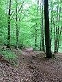 Losheim am See - panoramio (11).jpg