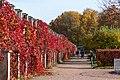 Lower Gardens at Petergof - panoramio (7).jpg