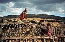 d9047ade2c30c Maasai women repairing a house in Masai Mara (1996)