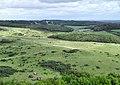 Lulworth Range - geograph.org.uk - 1521200.jpg