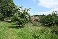 Lustleigh, Lustleigh Orchard - geograph.org.uk - 861508.jpg