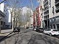Lyon 2e - Cours Bayard depuis le quai Perrache (mars 2019).jpg