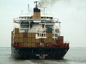 MSC Hailey p2, at Port of Antwerp, Belgium 23-Dec-2005.jpg