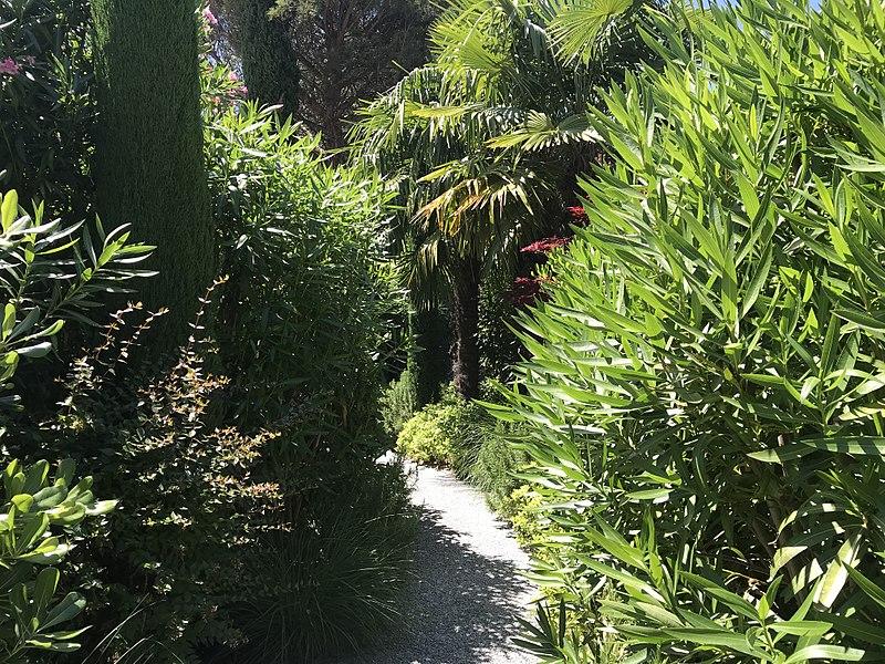 File:Maison Pic, Valence, jardin intérieur.JPG