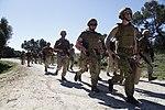 Marines Conduct Trilateral Training during Lisa Azul 150309-M-XZ244-015.jpg