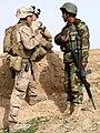 Marines patrol with ANA (4401450116).jpg
