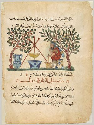 "Baghdad School - ""Preparation of Medicine from Honey,"" translated and illustrated from Dioscorides by the Baghdad School"