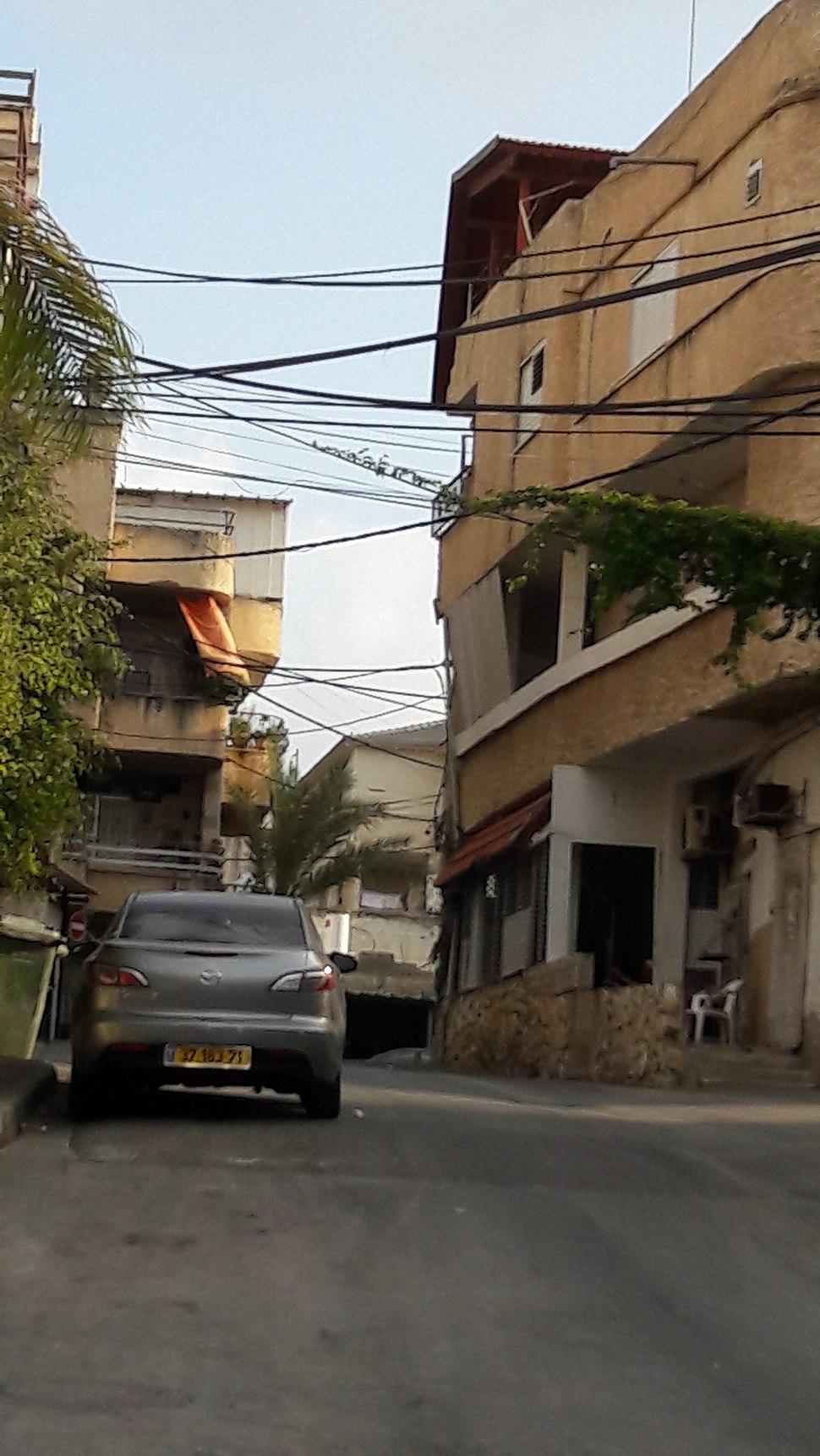 Mazra'a 2016