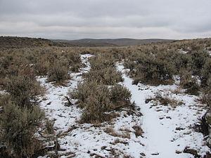 Meek Cutoff - Ruts of Meek's and Elliott's wagons near Westfall, Oregon, Oregon