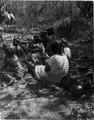 Mellan Caiza och Fortin Crévaux vid Rio Pilcomayo. Sydamerika. Bolivia - SMVK - 003613.tif