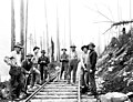Men with shovels on railroad tracks, Snohomish County, ca 1913 (PICKETT 201).jpeg