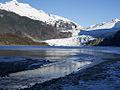 Mendenhall Glacier Frzn 928.jpg