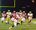 Mentor Cardinals vs. St. Ignatius Wildcats (11043742516).jpg