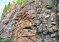 Microsyenite dike (Precambrian; Michipicoten River Bridge South roadcut, south of Wawa, Ontario, Canada) 1 (47924583066).jpg