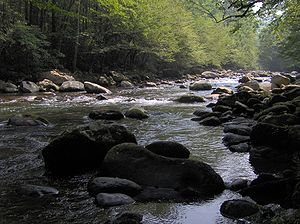 Greenbrier (Great Smoky Mountains) - Wikipedia