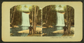"Minnehaha Falls, (""Summer."") Minn, from Robert N. Dennis collection of stereoscopic views.png"