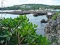 Miyako jima - panoramio.jpg