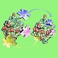 Modellierung von genetisch modifizierten Enzymen (Cutinasen).jpg
