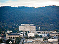 Montgomery Park - Portland Oregon - from Fremont Bridge - zoom.jpg