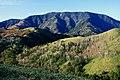 Mount Ena.jpg