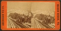Mount Pisgah Plane looking down, from Robert N. Dennis collection of stereoscopic views 3.png