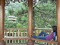 Mountain path pagoda for relaxation and viewing.JPG
