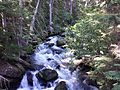 Mountaineer Creek - Flickr - brewbooks.jpg